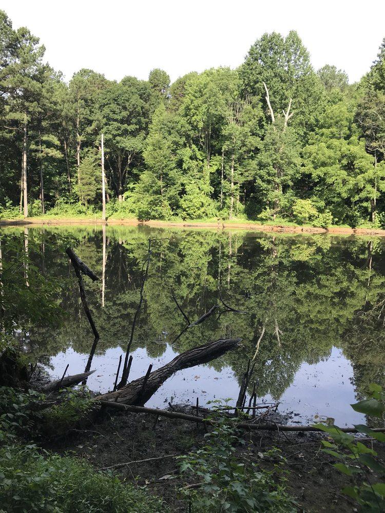 RibbonWalk Nature Preserve