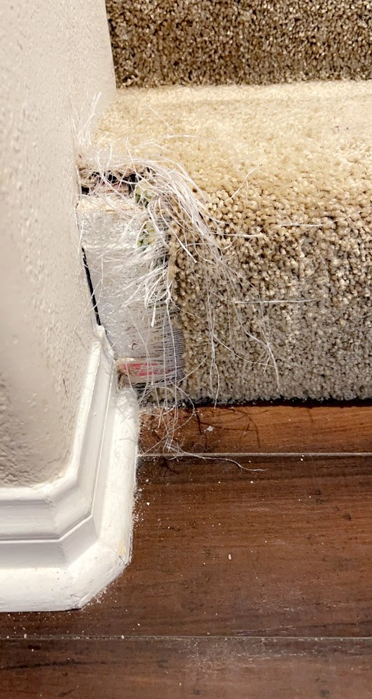 Inland Empire Carpet Repair and Cleaning