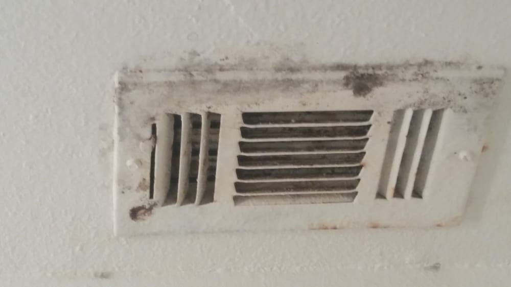 Mold In Ac Vents >> The mold on my vent in the bathroom. My old AC was leaking ...