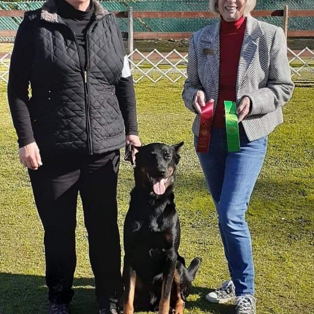 Redefined Dog Training: Topeka, KS