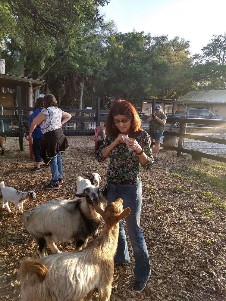 DK Farms: 1750 Lake Ave SE, Largo, FL