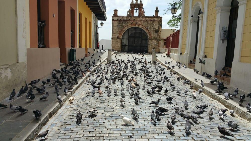 William's Transport: Calle Ismael Rivera 110, San Juan, PR