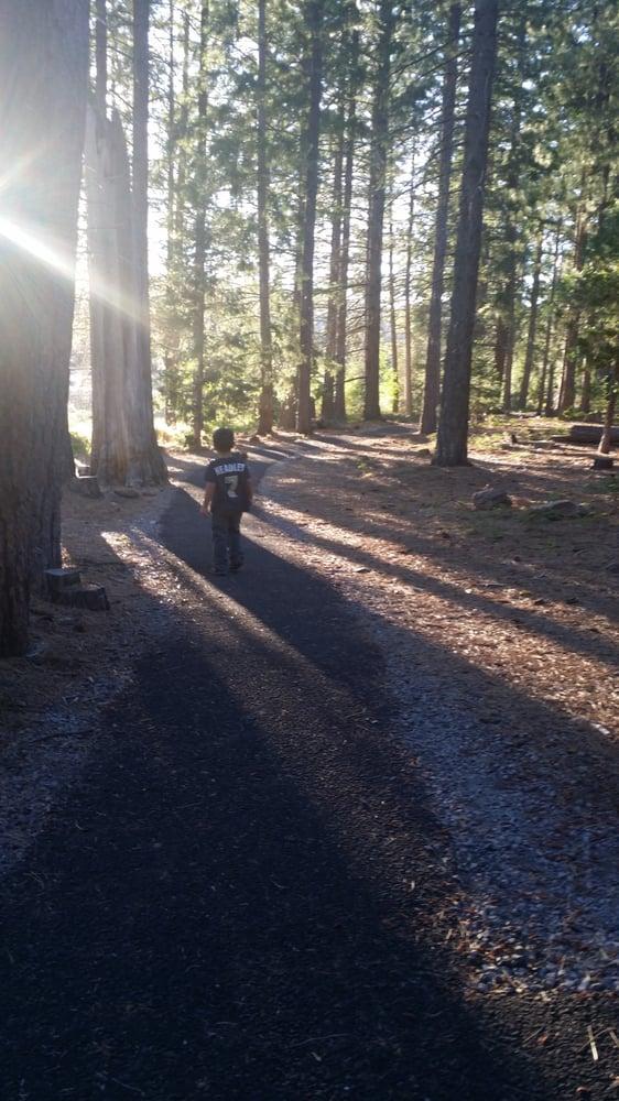Juanita Lake Campground: Macdoel, CA