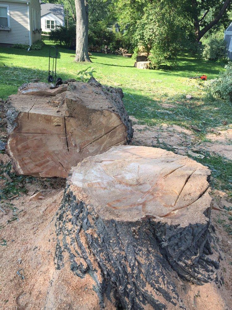 Ryan's Tree Care: Addison, IL