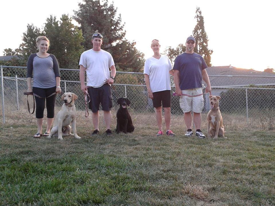 K9 Clan Dog Training: Vallejo, CA