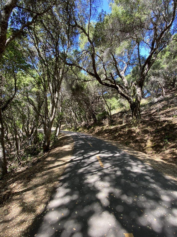 Crystal Springs Park: 1801 Crystal Springs Rd, Hillsborough, CA