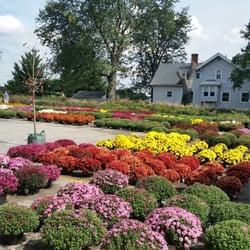 Dammann S Lawn Garden Center 28 Photos Nurseries