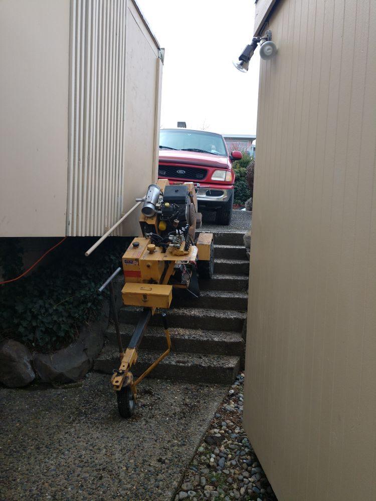 Sound Stump Removal: Monroe, WA