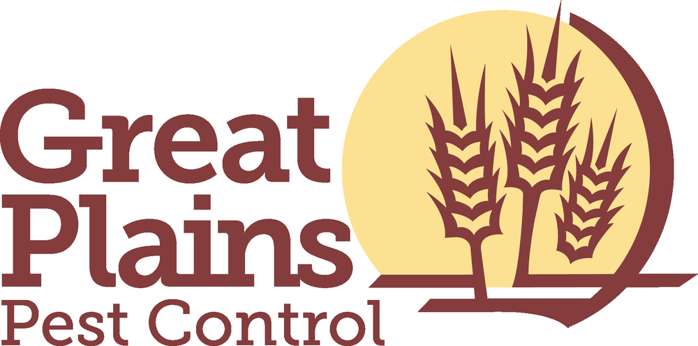 Great Plains Pest Control  Get Quote  Pest Control. Independent Insurance Agents Colorado. Holistic Treatments For Depression. Physician Relationship Management Software. Car Financing Interest Rates. Free Debt Consolidation Companies. Dodge Challenger Wallpaper Bayou Health Plan. Creating Database In Mysql Emerald Tree Care. Newman University Wichita Cute Cars For Girls