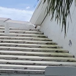 Top 10 Best Roof Cleaning In Boca Raton Fl Last Updated