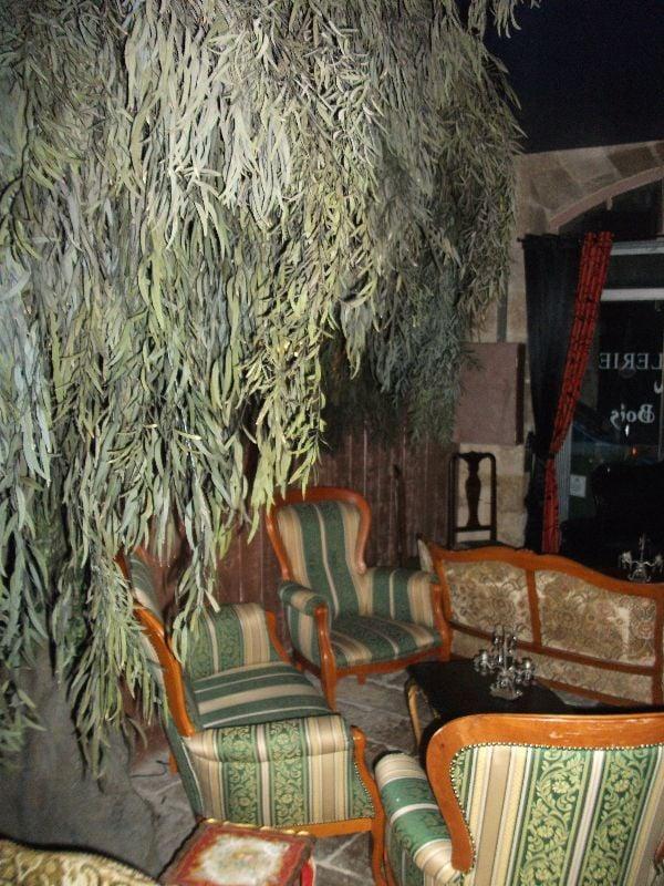 Photo de Le Petit Bois  Bordeaux, France Le Petit Bois 10 ~ Restaurant Le Petit Bois Bordeaux
