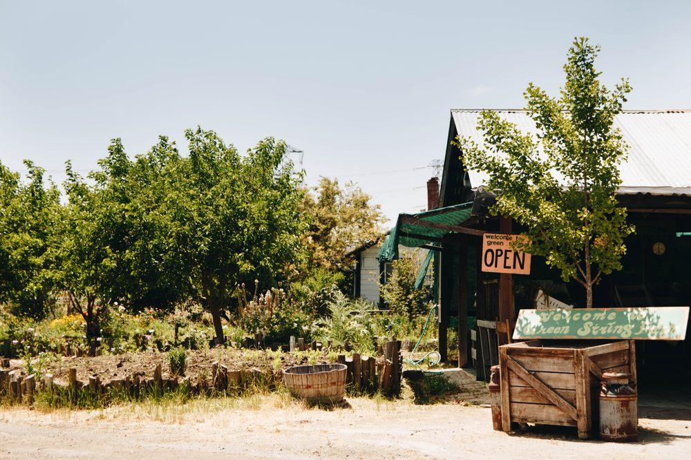 Green String Farm