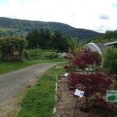 Photo Of Raintree Nursery Morton Wa United States