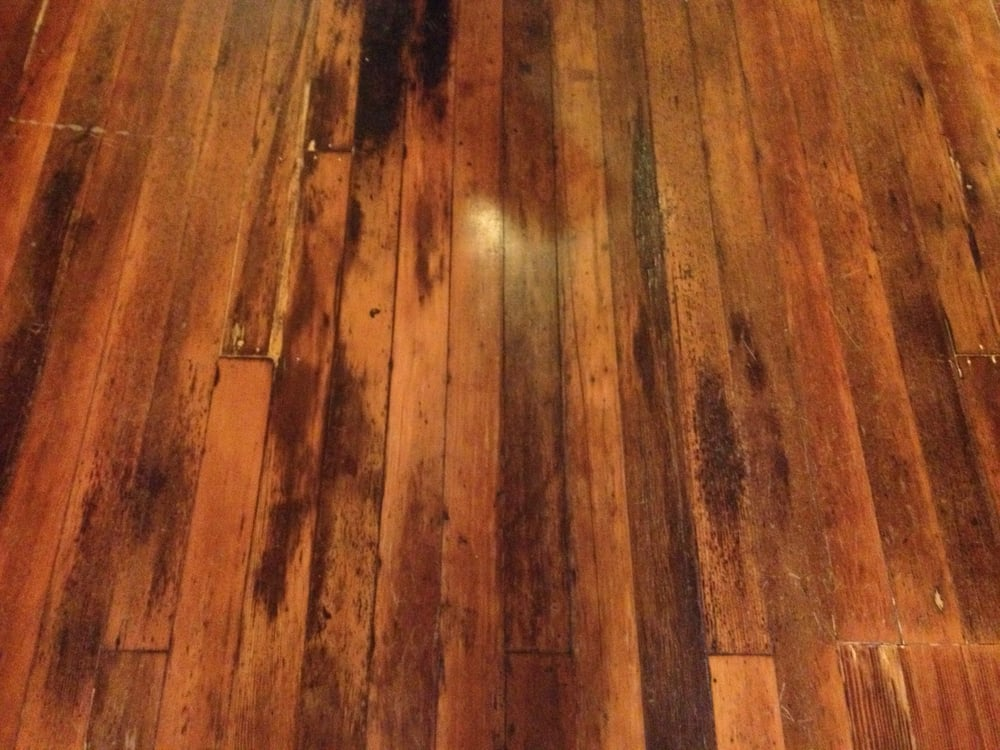 the museum wood floor that charlie chaplin walked on when he was signed to essanay film co yelp. Black Bedroom Furniture Sets. Home Design Ideas