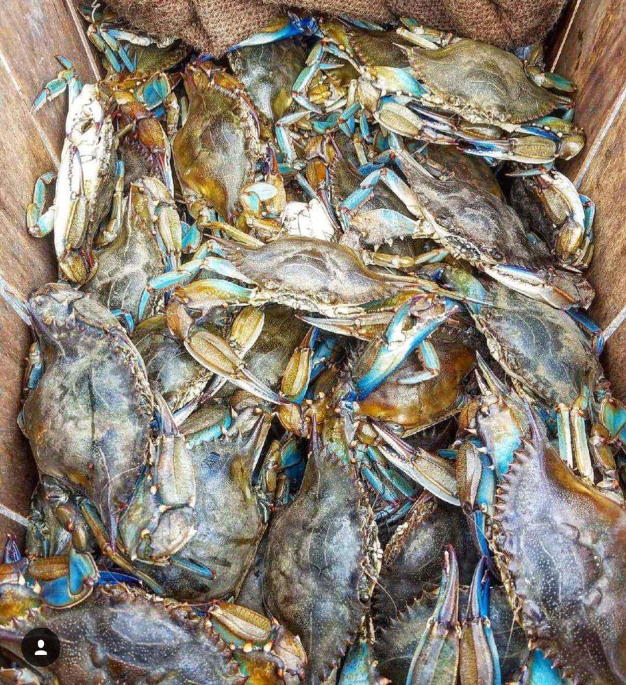 Crab palace 40 photos 67 reviews seafood markets for Fish market newark nj