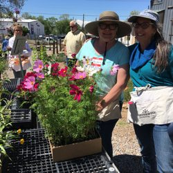 Photo Of Waterwise Gardening   Santa Fe, NM, United States. The Plants You