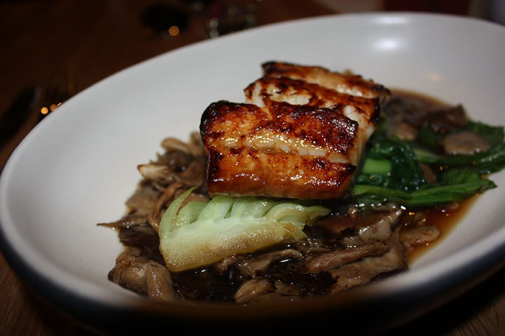 Miso glazed black cod bok choy asian mushroom yelp for Miso asian kitchen