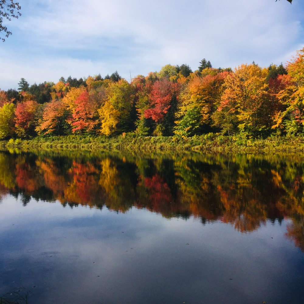 Pine Grove Campground and Cottages: 822 Grindstone Rd, Medway, ME