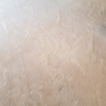 photo of so white carpet cleaning los angeles ca united states