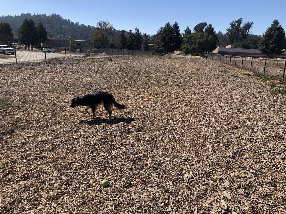 Scotts Valley Dog Park: 361 Kings Village Rd, Scotts Valley, CA