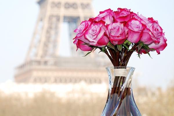 violette s roses blumenladen florist 37 rue des mathurins saint lazare grands magasins. Black Bedroom Furniture Sets. Home Design Ideas