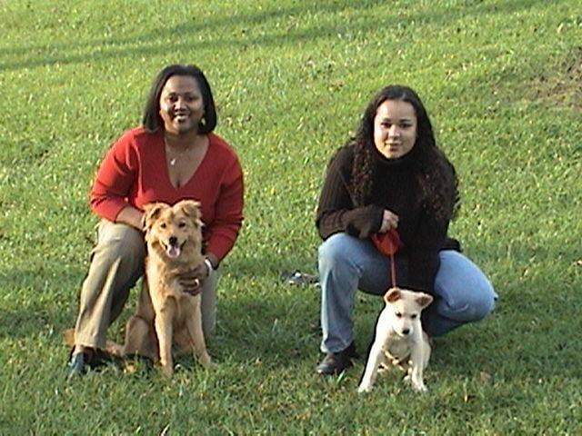 Advanced Canine Nashville Dog Training: 916 Anderson Ln, Nashville, TN