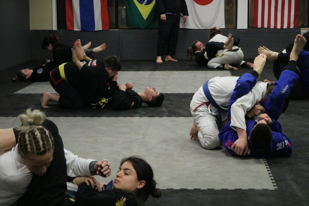The Hive Martial Arts Academy: 291 Rt 72 E, Stafford Township, NJ
