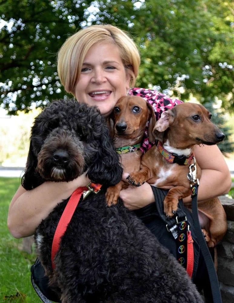 Champlain Valley Veterinary Services: 408 Route 3, Plattsburgh, NY