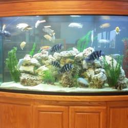 fish pros 15 foto negozi di animali 6801 bell st