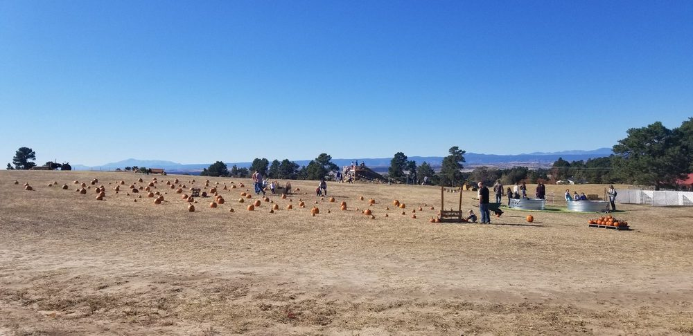 The Pumpkin Patch at Harmony Ridge Farms: 6322 Flintwood Rd, Parker, CO