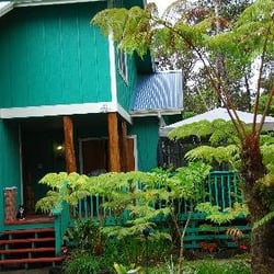 bamboo orchid cottage bed breakfast closed 15 reviews bed rh yelp com bamboo orchid cottage volcano Dendrobium Orchids