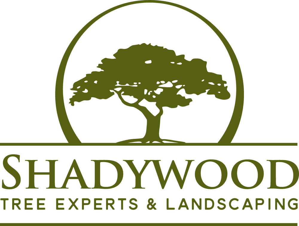 Shadywood Tree Experts