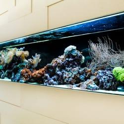 aquarium west zoohandlung tierbedarf weinberger str. Black Bedroom Furniture Sets. Home Design Ideas