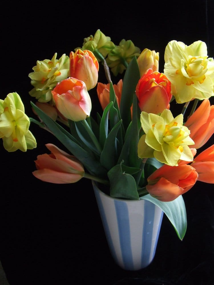 Wyandotte Flowers