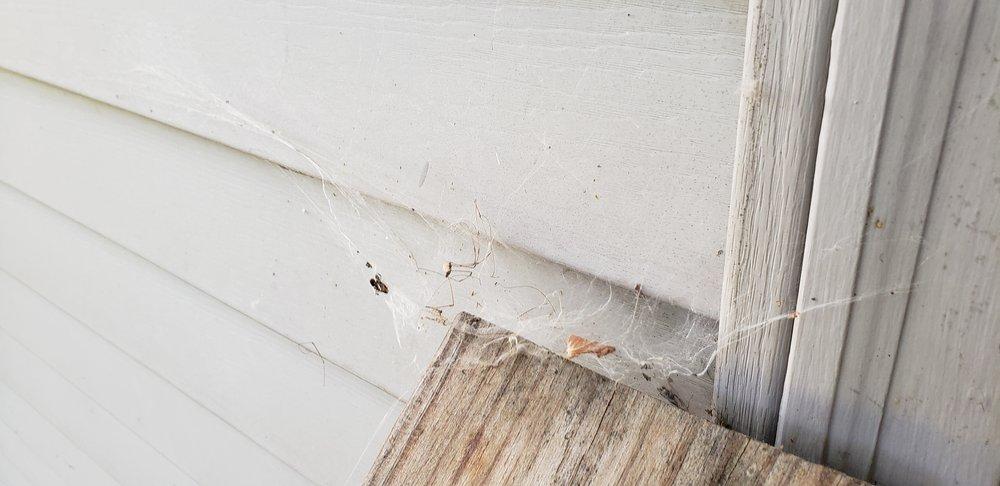 Hawx Pest Control   Brookfield: 3695 N 126th St, Brookfield, WI