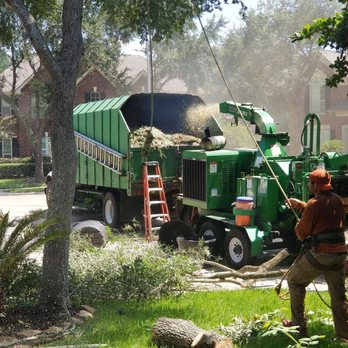 Photo Of Aim S Tree Service Houston Tx United States