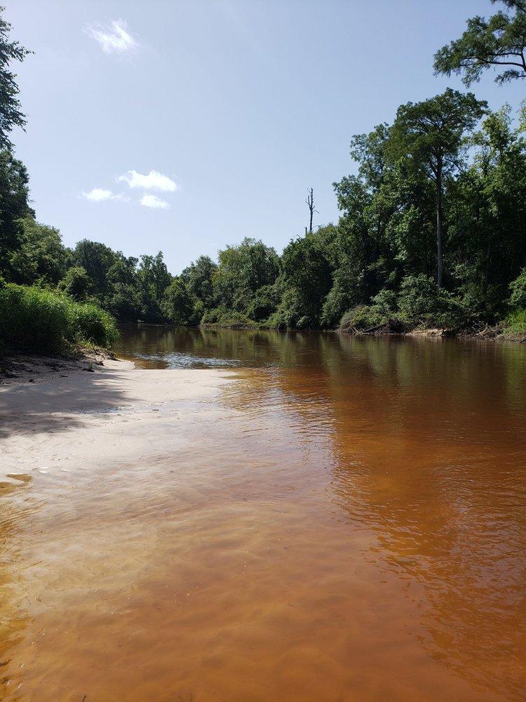 Village Creek State Park: 8854 Park Rd 74, Lumberton, TX