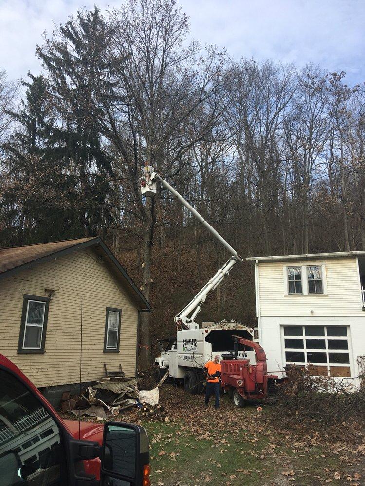 Complete Tree Service: 169 Verona Dr, Wellsburg, WV