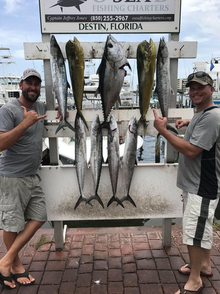 O Sea D Fishing Charters