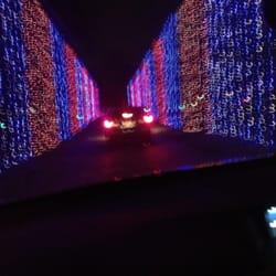 Jellystone Park Christmas Lights