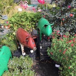 Photo Of Evergreen Garden Center Clovis Ca United States