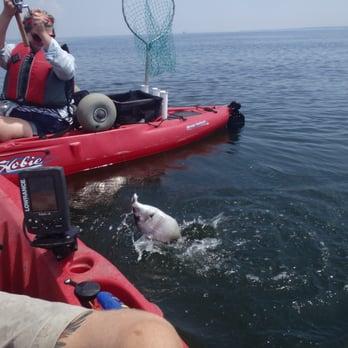Ny kayak fishing guide services 15 photos 17 reviews for Elias v fishing