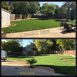 Photo Of Sen S Landscaping Elk Grove Ca United States