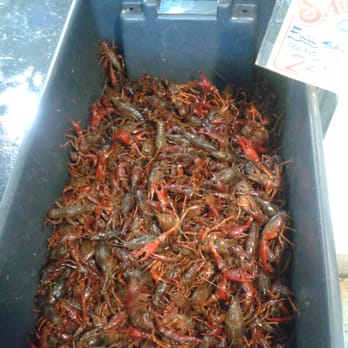how to clean live crawfish