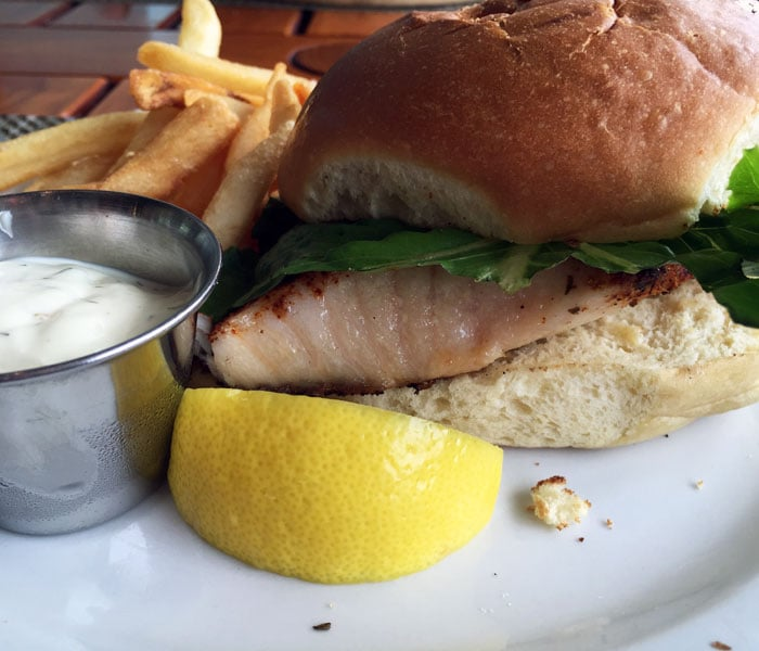 Close up shot of my fresh fish sandwich yelp for Uncle s fish market and grill