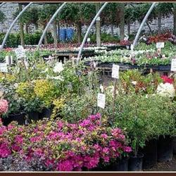 Photo Of Kasch S Garden Centers Nurseries Portland Or United States Mcloughlin