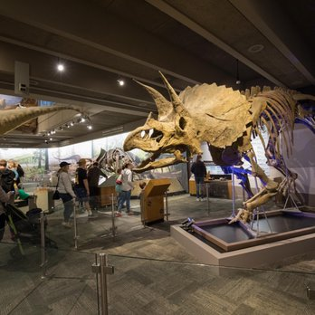 Photo of Museum of Science - Boston, MA, United States. Dinosaurs