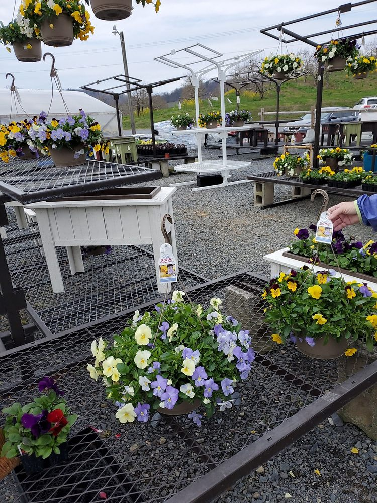 Taylor's Greenhouse: 265 Fairgrounds Rd, Biglerville, PA