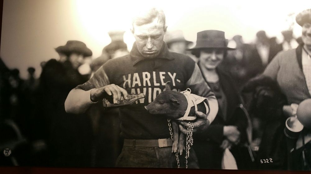 Orlando Harley-Davidson