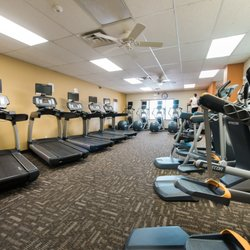 Anytime fitness gyms amstutz rd leo in phone number